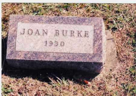 BURKE, JOAN - Jackson County, Ohio | JOAN BURKE - Ohio Gravestone Photos