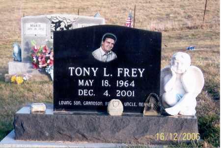 FREY, TONY L. - Jackson County, Ohio | TONY L. FREY - Ohio Gravestone Photos