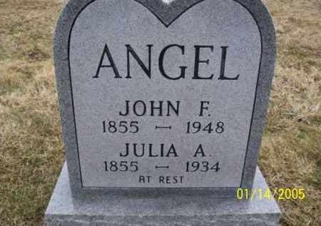 PERDUE JULIA, A. - Jackson County, Ohio | A. PERDUE JULIA - Ohio Gravestone Photos