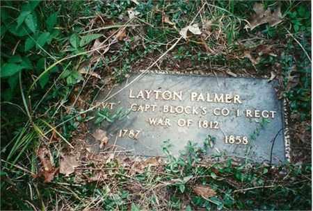 PALMER, LAYTON - Jackson County, Ohio | LAYTON PALMER - Ohio Gravestone Photos