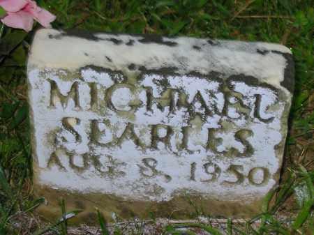 SEARLES, MICHAEL - Jackson County, Ohio | MICHAEL SEARLES - Ohio Gravestone Photos