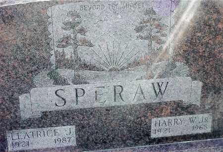 SPERAW, HARRY W. JR - Jackson County, Ohio   HARRY W. JR SPERAW - Ohio Gravestone Photos