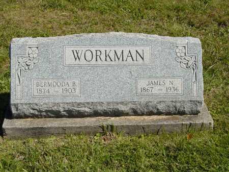WORKMAN, JAMES N. - Jackson County, Ohio | JAMES N. WORKMAN - Ohio Gravestone Photos