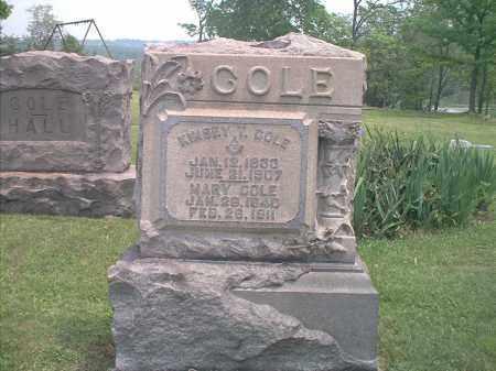 COLE, MARY - Jefferson County, Ohio | MARY COLE - Ohio Gravestone Photos