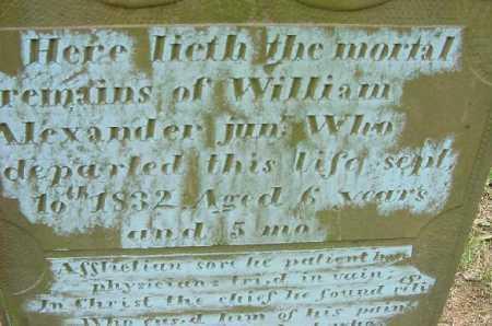 ALEXANDER, WILLIAM, JR - CLOSE VIEW #1 - Jefferson County, Ohio | WILLIAM, JR - CLOSE VIEW #1 ALEXANDER - Ohio Gravestone Photos