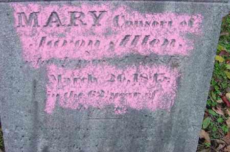 ALLEN, MARY - CLOSE VIEW - Jefferson County, Ohio   MARY - CLOSE VIEW ALLEN - Ohio Gravestone Photos