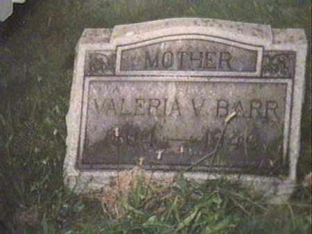 LOWMILLER BARR, VALERIE VIENNA - Jefferson County, Ohio | VALERIE VIENNA LOWMILLER BARR - Ohio Gravestone Photos
