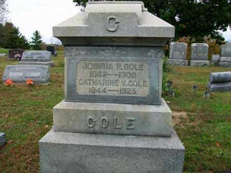 COLE, CATHARINE - Jefferson County, Ohio | CATHARINE COLE - Ohio Gravestone Photos