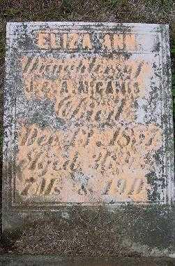 M'CAMIS, ELIZA ANN - Jefferson County, Ohio | ELIZA ANN M'CAMIS - Ohio Gravestone Photos