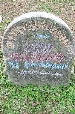 M'CAMIS, REBECCA - Jefferson County, Ohio | REBECCA M'CAMIS - Ohio Gravestone Photos