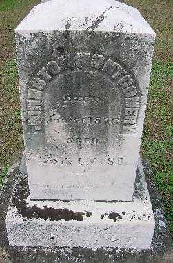 MONTGOMERY, JOHNSTON - Jefferson County, Ohio | JOHNSTON MONTGOMERY - Ohio Gravestone Photos