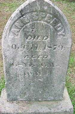 SPEEDY, ANN - Jefferson County, Ohio | ANN SPEEDY - Ohio Gravestone Photos