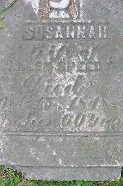 SPEEDY, SUSANNAH - Jefferson County, Ohio | SUSANNAH SPEEDY - Ohio Gravestone Photos