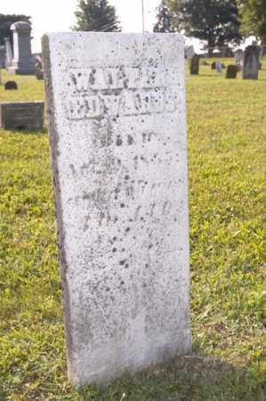 EDWARDS, WALTER - Knox County, Ohio | WALTER EDWARDS - Ohio Gravestone Photos