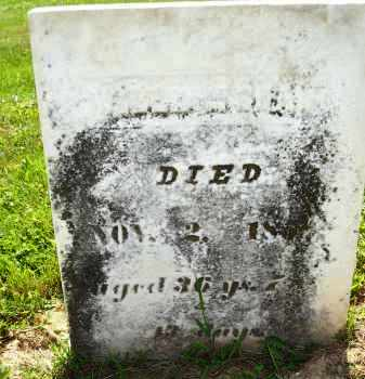 SHAW, WILLIAM - Knox County, Ohio | WILLIAM SHAW - Ohio Gravestone Photos