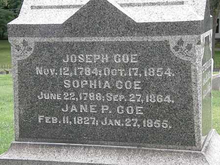 COE, JANE P. - Lake County, Ohio   JANE P. COE - Ohio Gravestone Photos