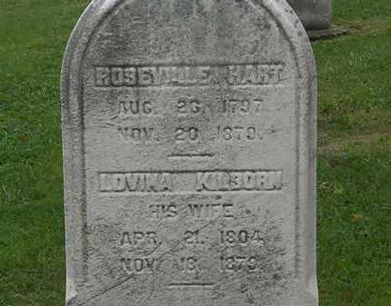 HART, LOVINA - Lake County, Ohio | LOVINA HART - Ohio Gravestone Photos