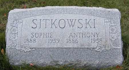 SITKOWSKI, ANTONI - Lake County, Ohio | ANTONI SITKOWSKI - Ohio Gravestone Photos