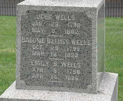 WELLS, SALOME - Lake County, Ohio | SALOME WELLS - Ohio Gravestone Photos