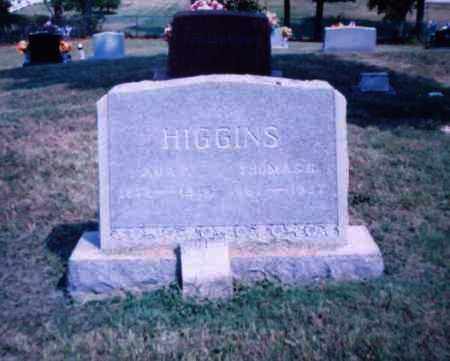 HIGGINS, ADA F. - Lawrence County, Ohio | ADA F. HIGGINS - Ohio Gravestone Photos