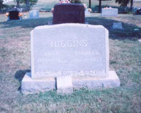 HIGGINS, ADA F. - Lawrence County, Ohio   ADA F. HIGGINS - Ohio Gravestone Photos