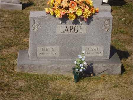 LARGE, BERLIN - Lawrence County, Ohio | BERLIN LARGE - Ohio Gravestone Photos