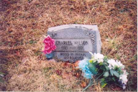 WILSON, CHARLES - Lawrence County, Ohio | CHARLES WILSON - Ohio Gravestone Photos