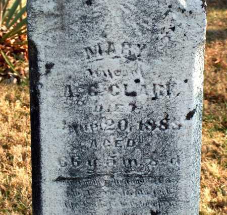 CLARK, MARY - Licking County, Ohio | MARY CLARK - Ohio Gravestone Photos