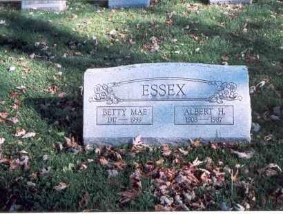 ESSEX, BETTY MAE - Licking County, Ohio | BETTY MAE ESSEX - Ohio Gravestone Photos