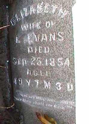 SHAFFER EVANS, ELIZABETH - Licking County, Ohio | ELIZABETH SHAFFER EVANS - Ohio Gravestone Photos