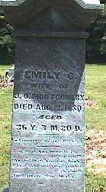 VANFOSSEN MONTGOMERY, EMILY - Licking County, Ohio | EMILY VANFOSSEN MONTGOMERY - Ohio Gravestone Photos
