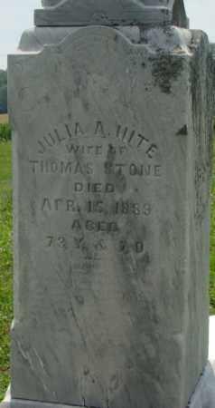 STONE, JULIA ANN - Licking County, Ohio | JULIA ANN STONE - Ohio Gravestone Photos