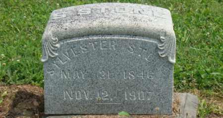 STONE, SYLVESTER - Licking County, Ohio | SYLVESTER STONE - Ohio Gravestone Photos