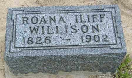 WILLISON, ROANA - Licking County, Ohio | ROANA WILLISON - Ohio Gravestone Photos