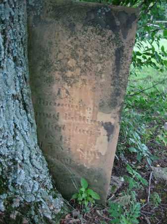 BALLINGER, SAMUEL - Logan County, Ohio | SAMUEL BALLINGER - Ohio Gravestone Photos