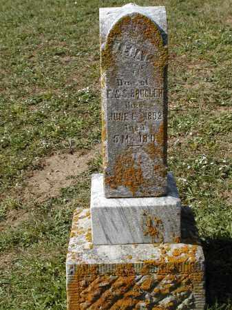 BRUGLER, LENA - Logan County, Ohio   LENA BRUGLER - Ohio Gravestone Photos