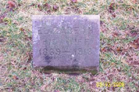 CHESTER, ELIZABETH - Logan County, Ohio | ELIZABETH CHESTER - Ohio Gravestone Photos