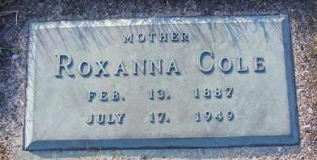 COLE, ROXANNA - Logan County, Ohio   ROXANNA COLE - Ohio Gravestone Photos