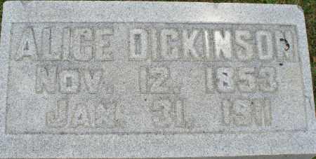 HEISLER DICKINSON, ALICE - Logan County, Ohio | ALICE HEISLER DICKINSON - Ohio Gravestone Photos