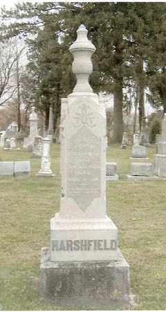 HARSHFIELD, HANNAH ELIZABETH NASH - Logan County, Ohio | HANNAH ELIZABETH NASH HARSHFIELD - Ohio Gravestone Photos