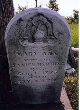 HERRING, MARY ANN - Logan County, Ohio | MARY ANN HERRING - Ohio Gravestone Photos