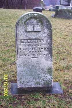 HILL, C.H. - Logan County, Ohio | C.H. HILL - Ohio Gravestone Photos
