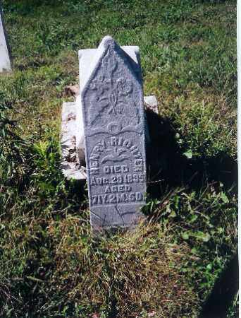 RICHTER, HENRY - Logan County, Ohio | HENRY RICHTER - Ohio Gravestone Photos