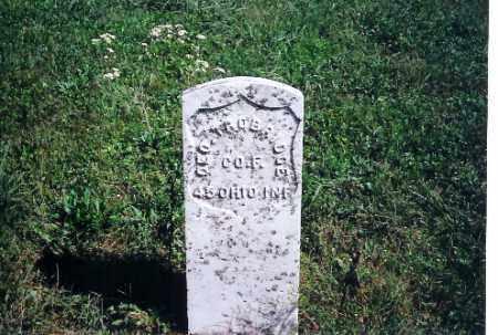 TROBRIDGE, GEORGE - Logan County, Ohio   GEORGE TROBRIDGE - Ohio Gravestone Photos