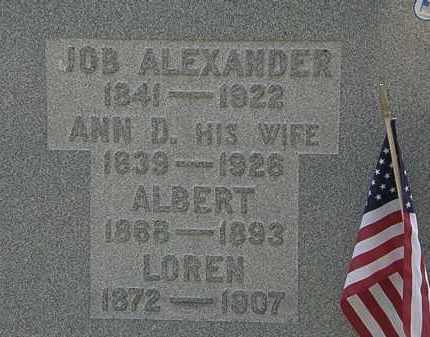 ALEXANDER, ALBERT - Lorain County, Ohio | ALBERT ALEXANDER - Ohio Gravestone Photos