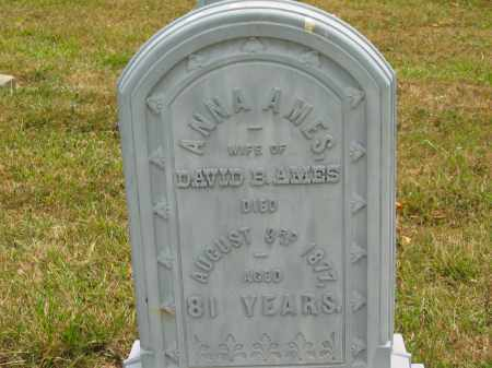 AMES, DAVID B. - Lorain County, Ohio | DAVID B. AMES - Ohio Gravestone Photos
