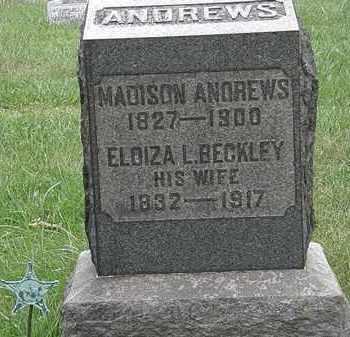 ANDREWS, MADISON - Lorain County, Ohio   MADISON ANDREWS - Ohio Gravestone Photos