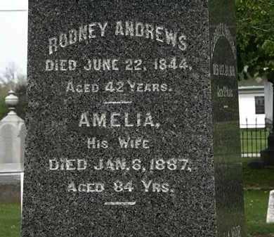 ANDREWS, RODNEY - Lorain County, Ohio | RODNEY ANDREWS - Ohio Gravestone Photos