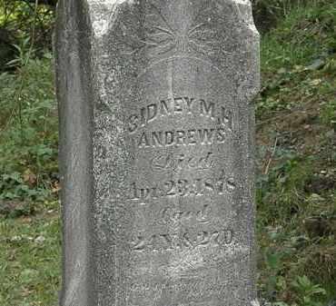 ANDREWS, SIDNEY M. H. - Lorain County, Ohio   SIDNEY M. H. ANDREWS - Ohio Gravestone Photos