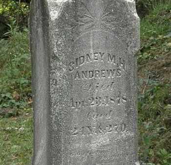 ANDREWS, SIDNEY M. H. - Lorain County, Ohio | SIDNEY M. H. ANDREWS - Ohio Gravestone Photos